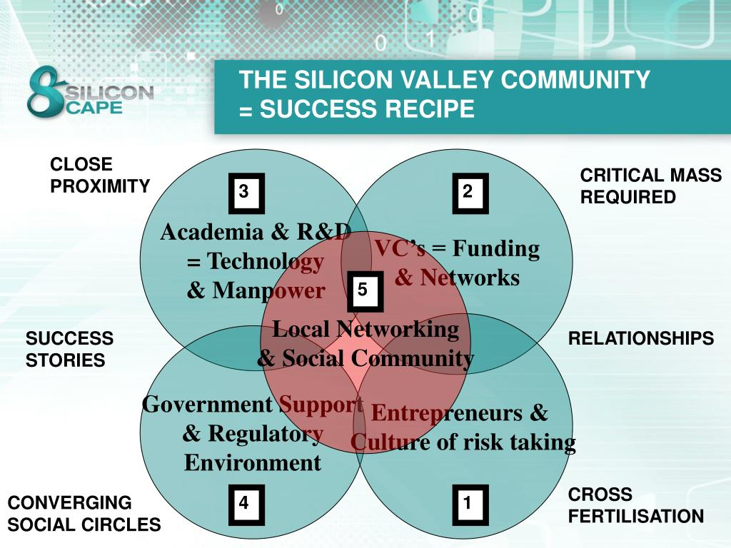THE SILICON VALLEY COMMUNITY