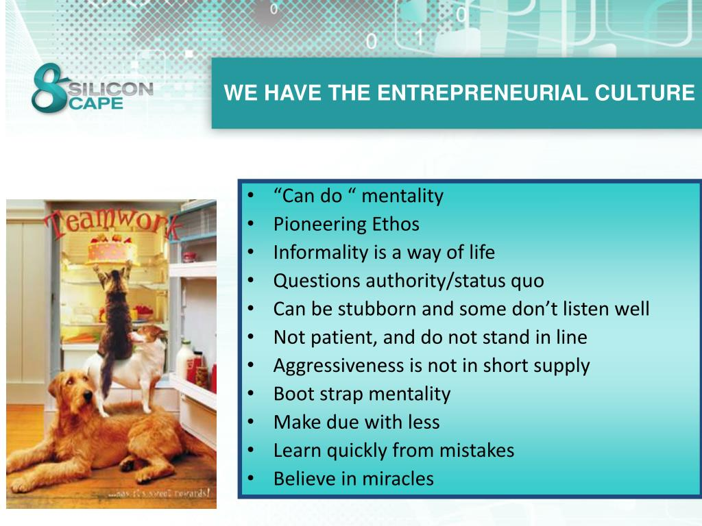 WE HAVE THE ENTREPRENEURIAL CULTURE