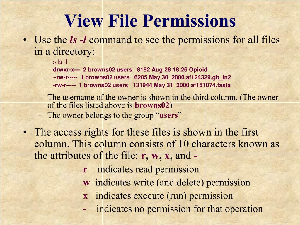 View File Permissions