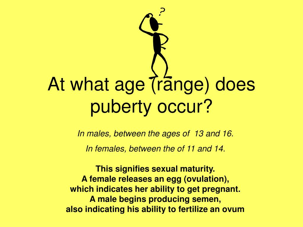 At what age (range) does puberty occur?