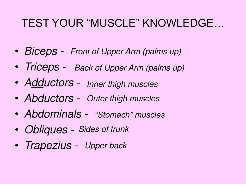 "TEST YOUR ""MUSCLE"" KNOWLEDGE…"