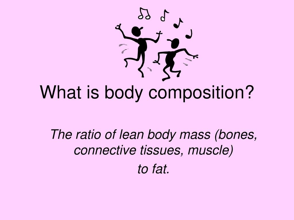 What is body composition?