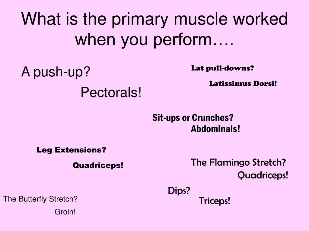 What is the primary muscle worked when you perform….
