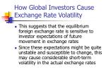 how global investors cause exchange rate volatility16
