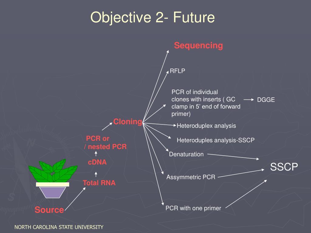 Objective 2- Future