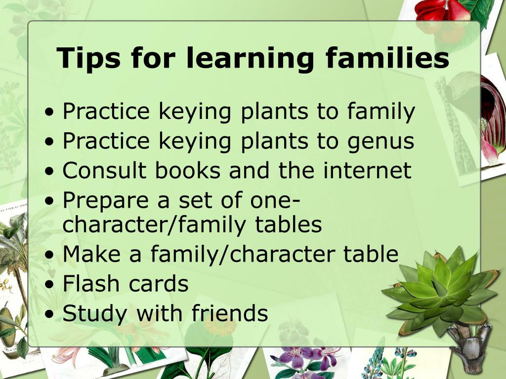 Tips for learning families
