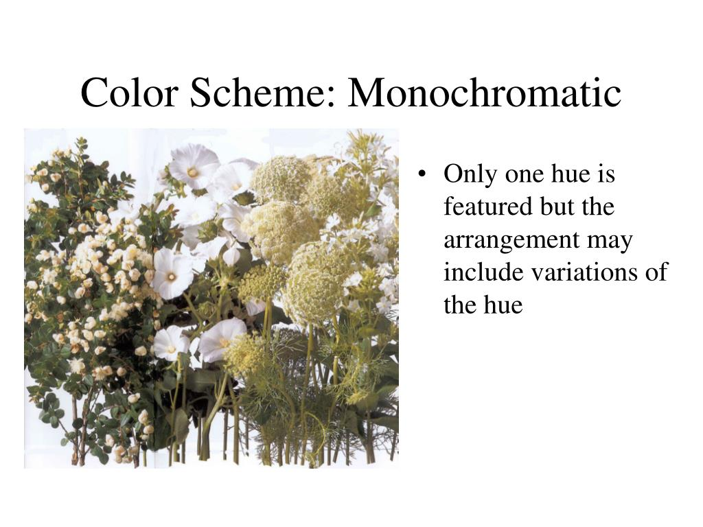 Color Scheme: Monochromatic