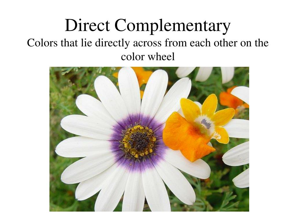 Direct Complementary