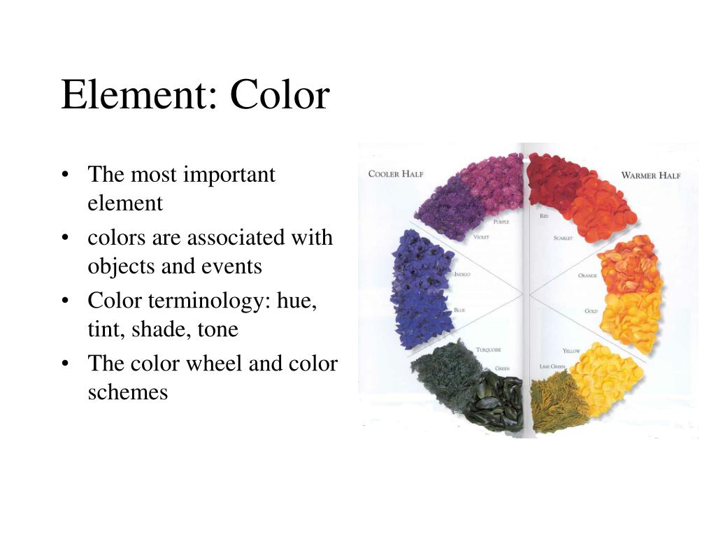 Element: Color