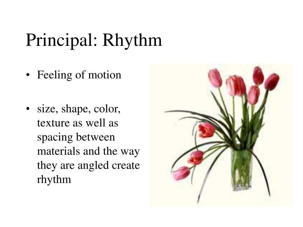 Principal: Rhythm