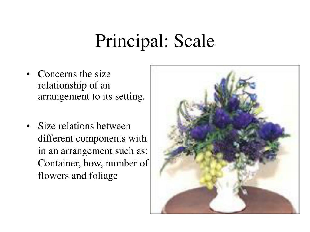 Principal: Scale