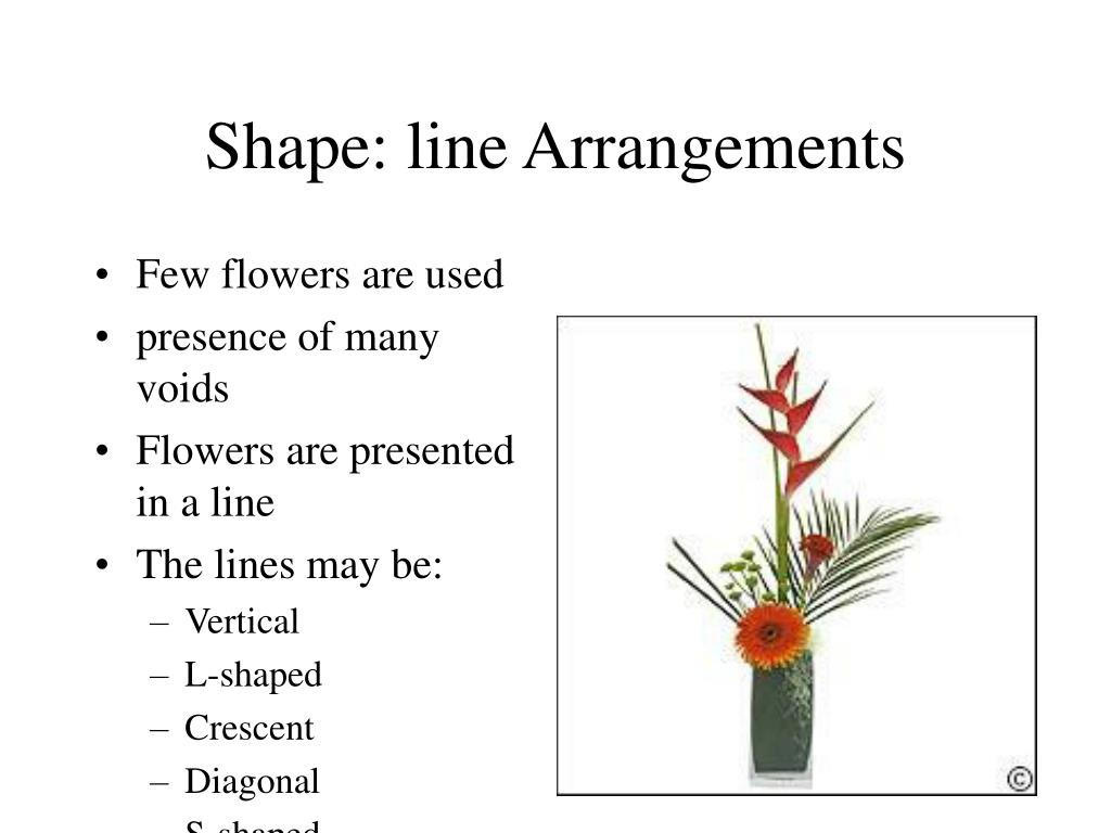 Shape: line Arrangements