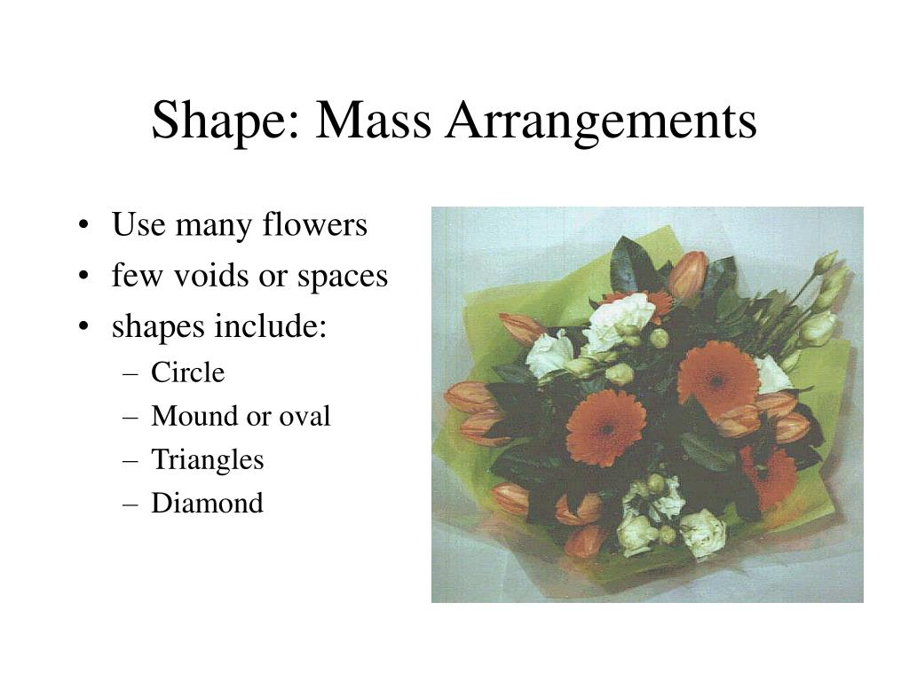 Shape: Mass Arrangements