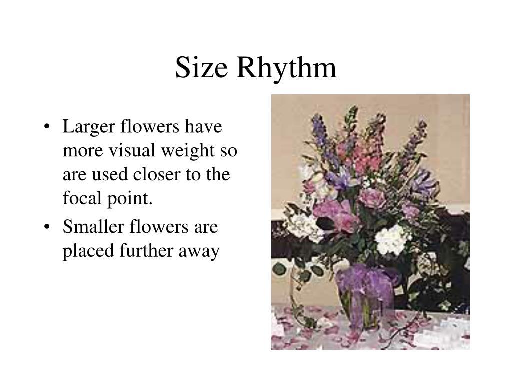 Size Rhythm