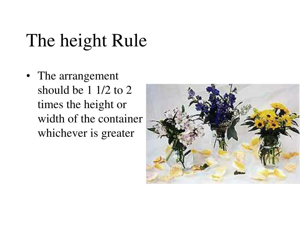 The height Rule