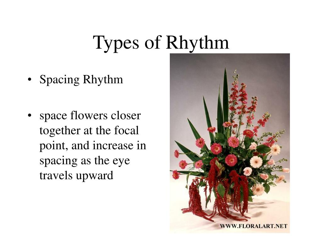 Types of Rhythm