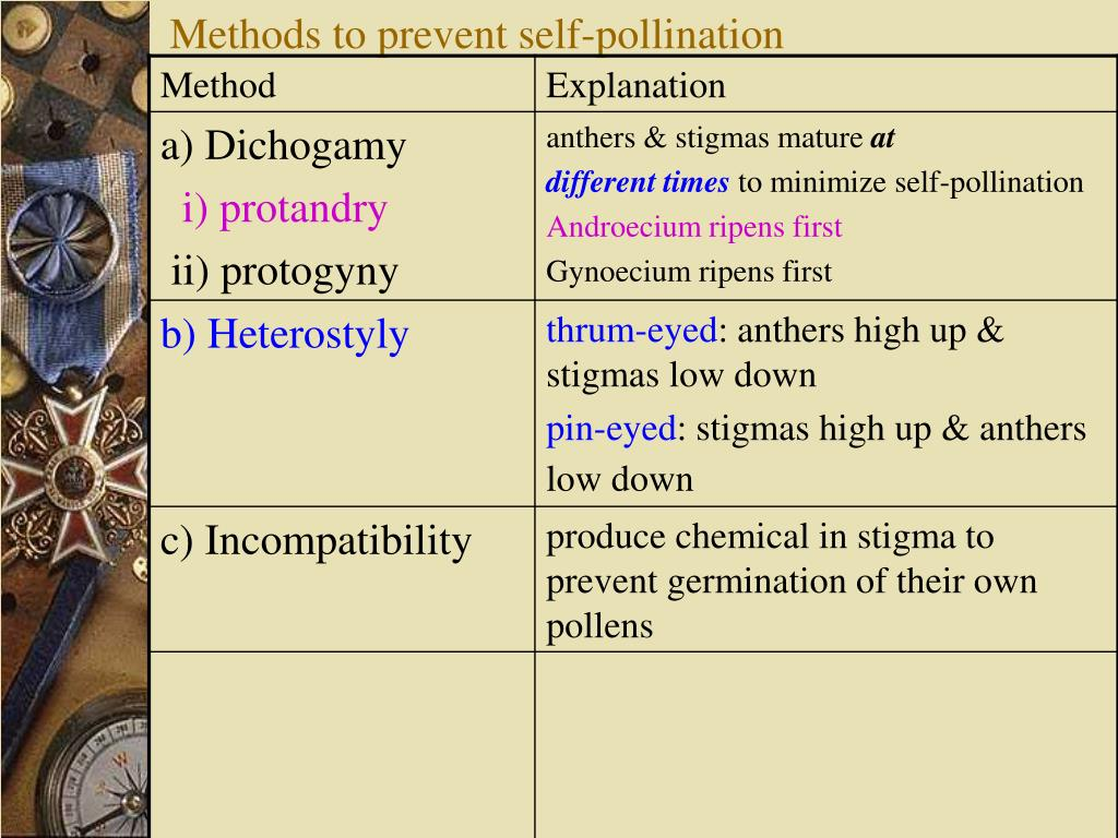 Methods to prevent self-pollination