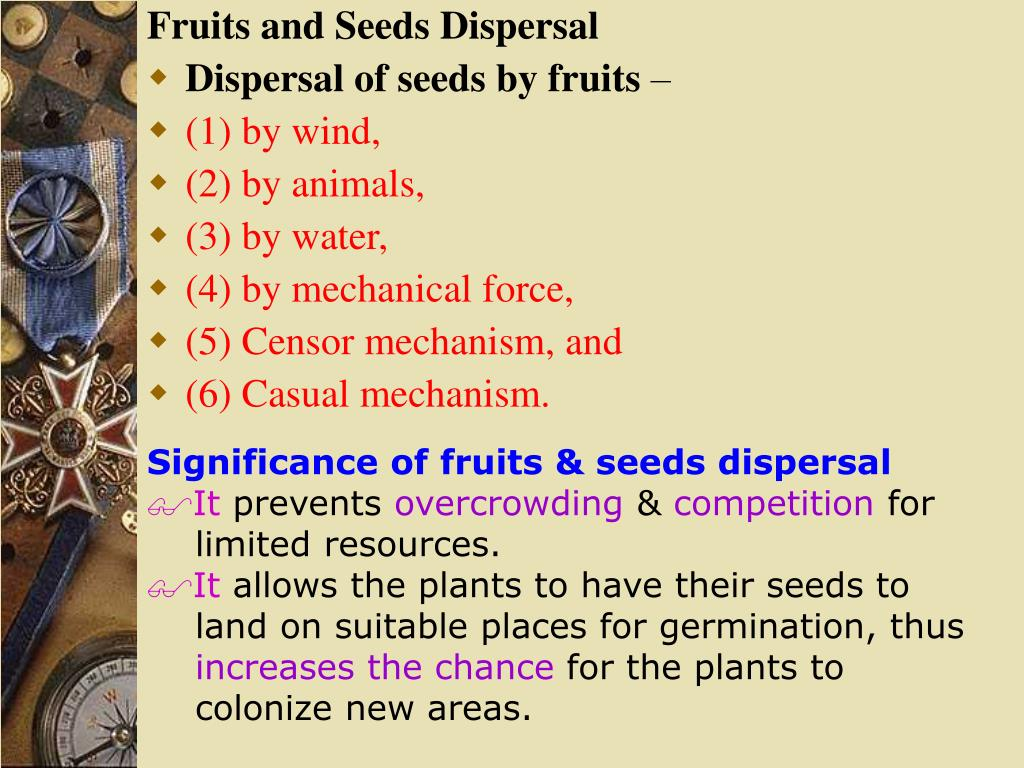 Fruits and Seeds Dispersal
