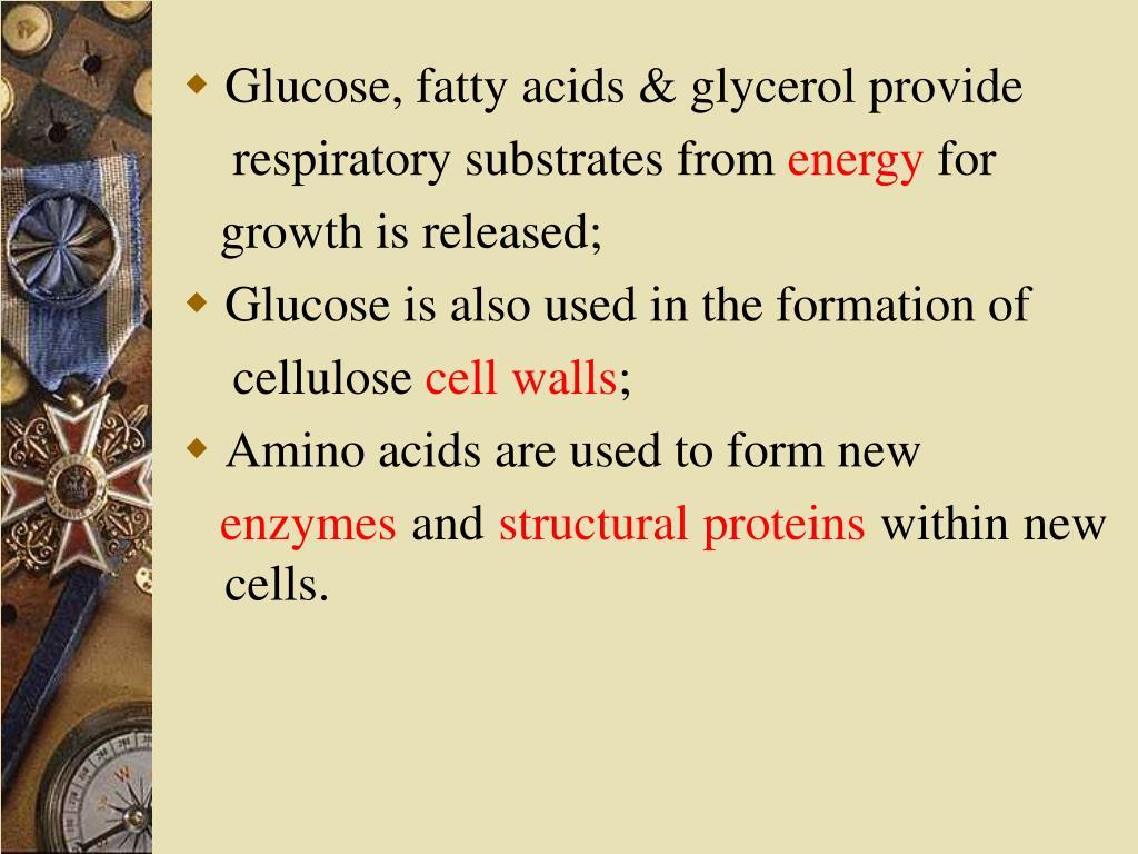 Glucose, fatty acids & glycerol provide