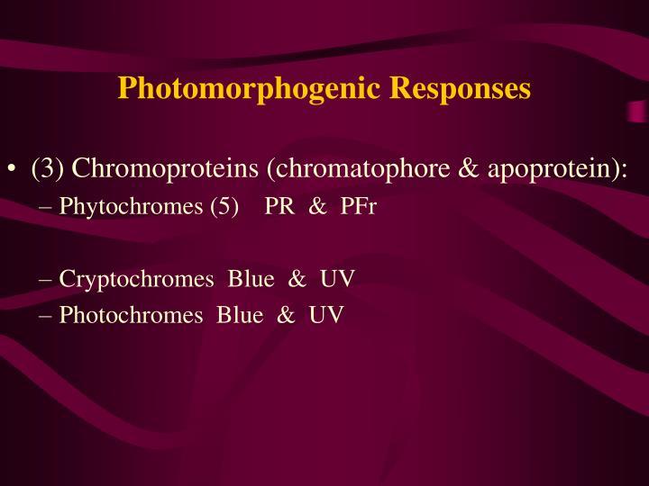 Photomorphogenic Responses