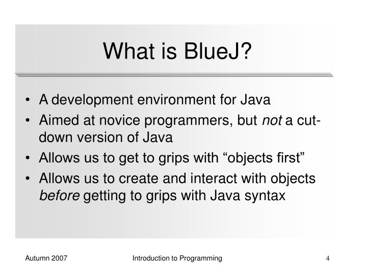 What is BlueJ?