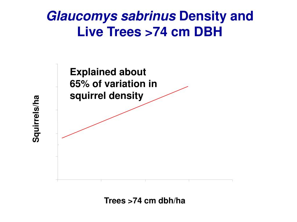 Glaucomys sabrinus
