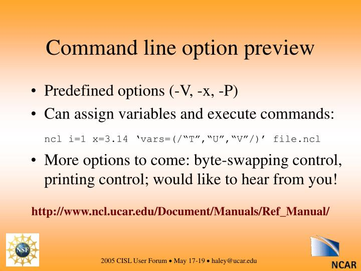 Command line option preview
