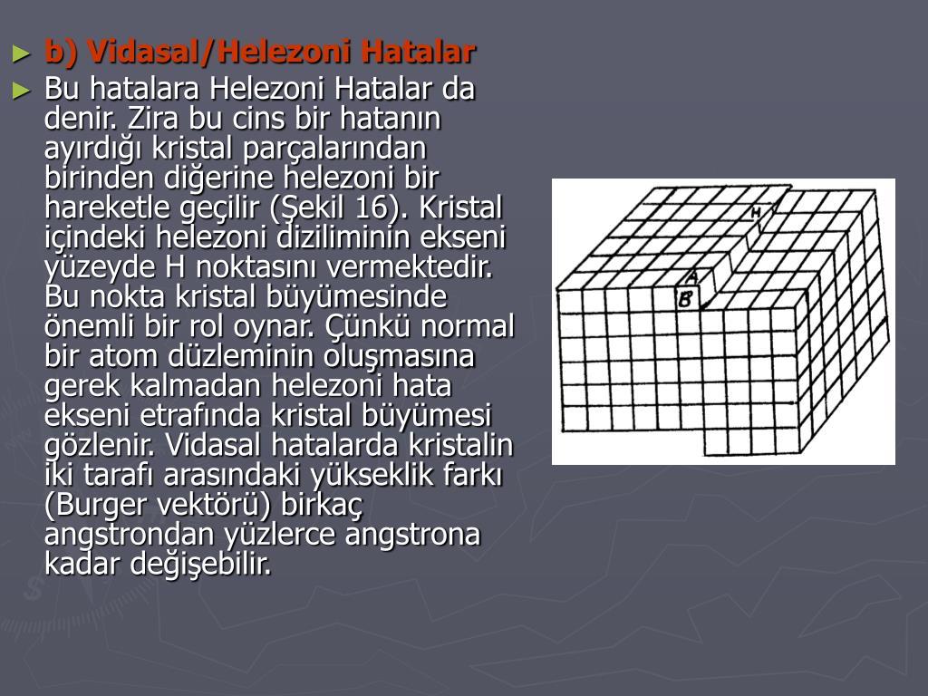 b) Vidasal/Helezoni Hatalar