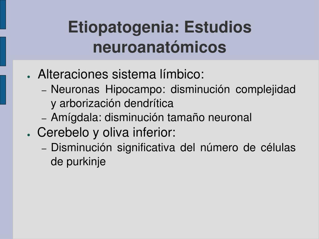 Etiopatogenia: Estudios neuroanatómicos