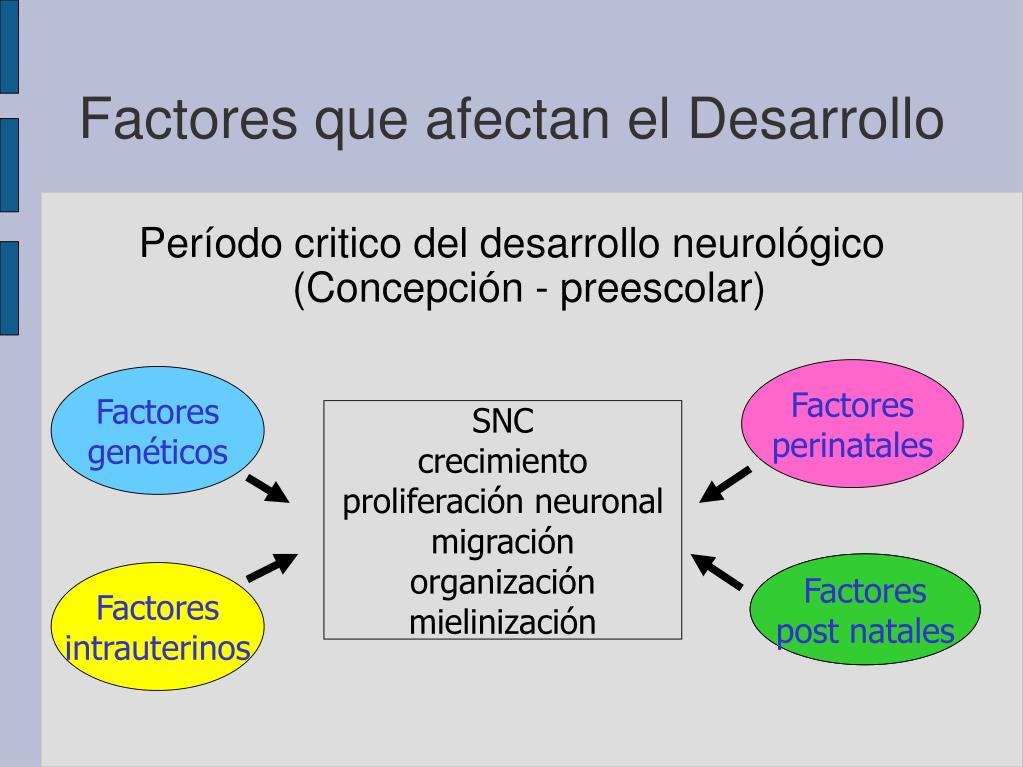 Período critico del desarrollo neurológico (Concepción - preescolar)