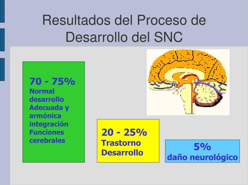 Resultados del Proceso de Desarrollo del SNC