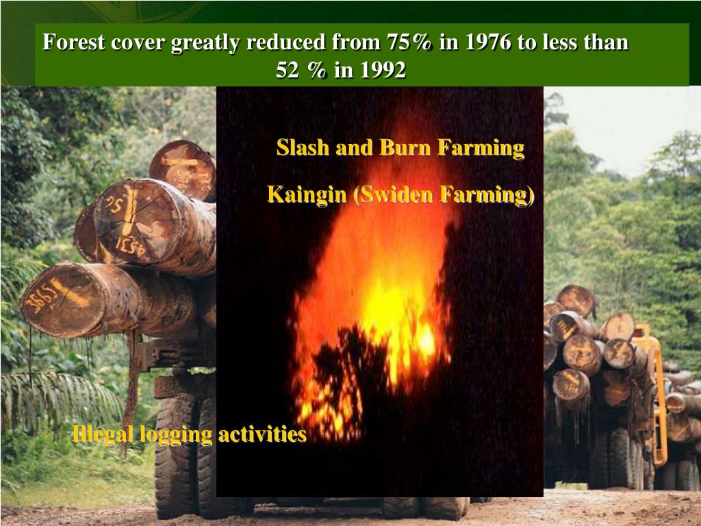 Forest cover greatly reduced from 75% in 1976 to less than
