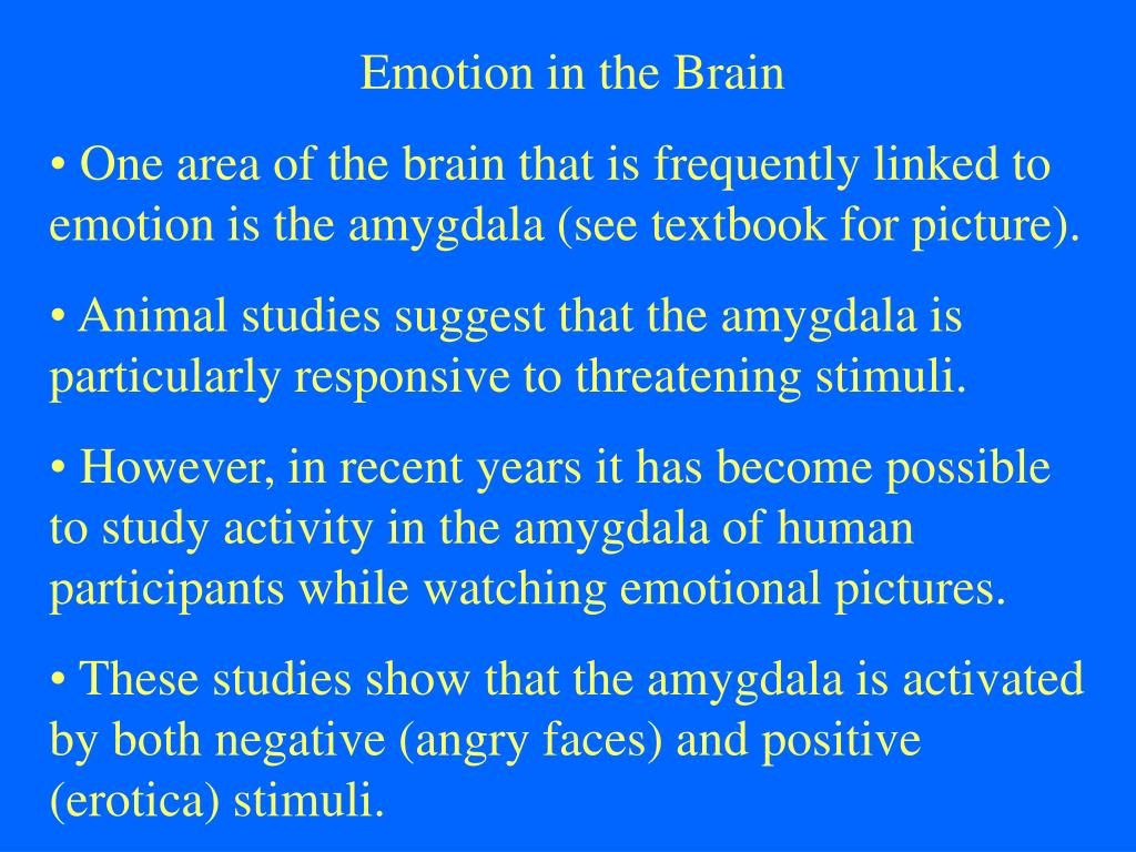 Emotion in the Brain