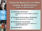 channel selection at other levels of distribution types of wholesaler