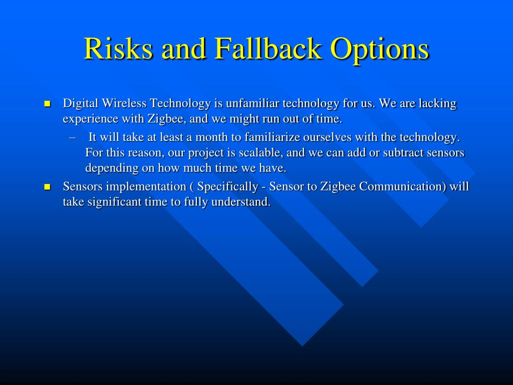 Risks and Fallback Options