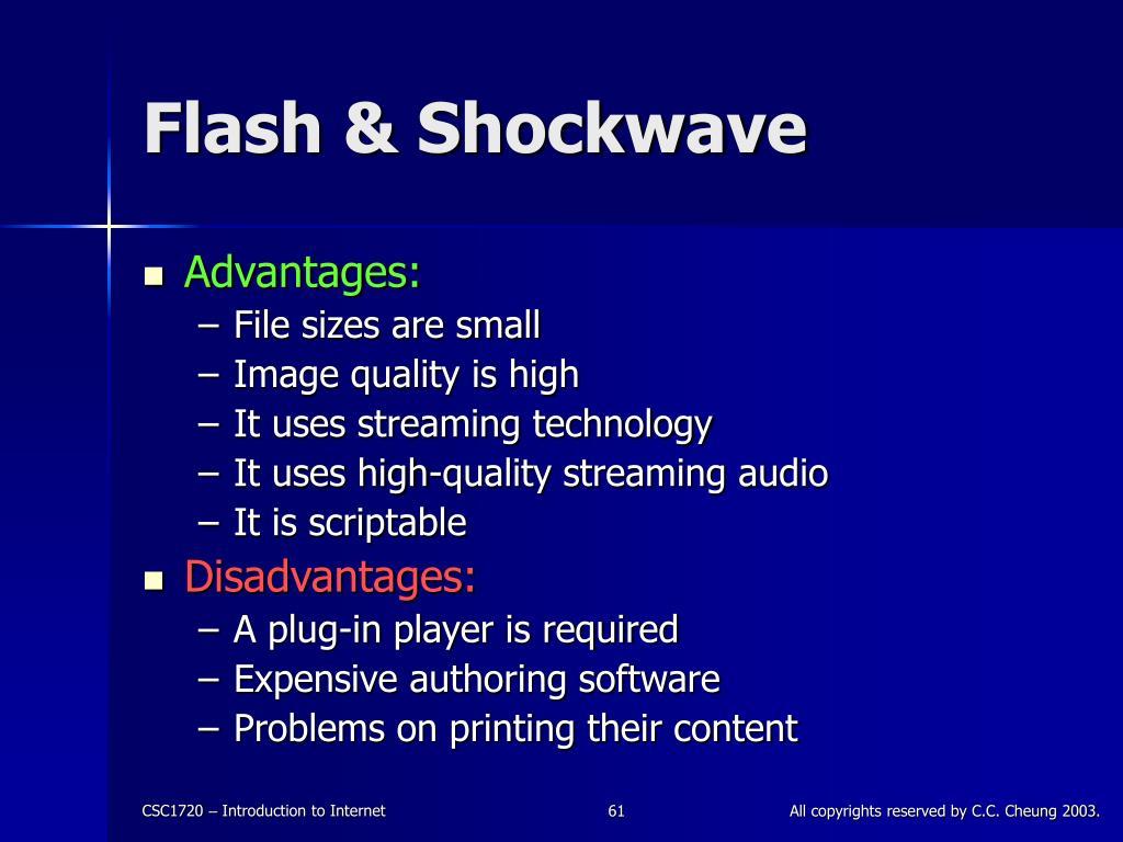 Flash & Shockwave