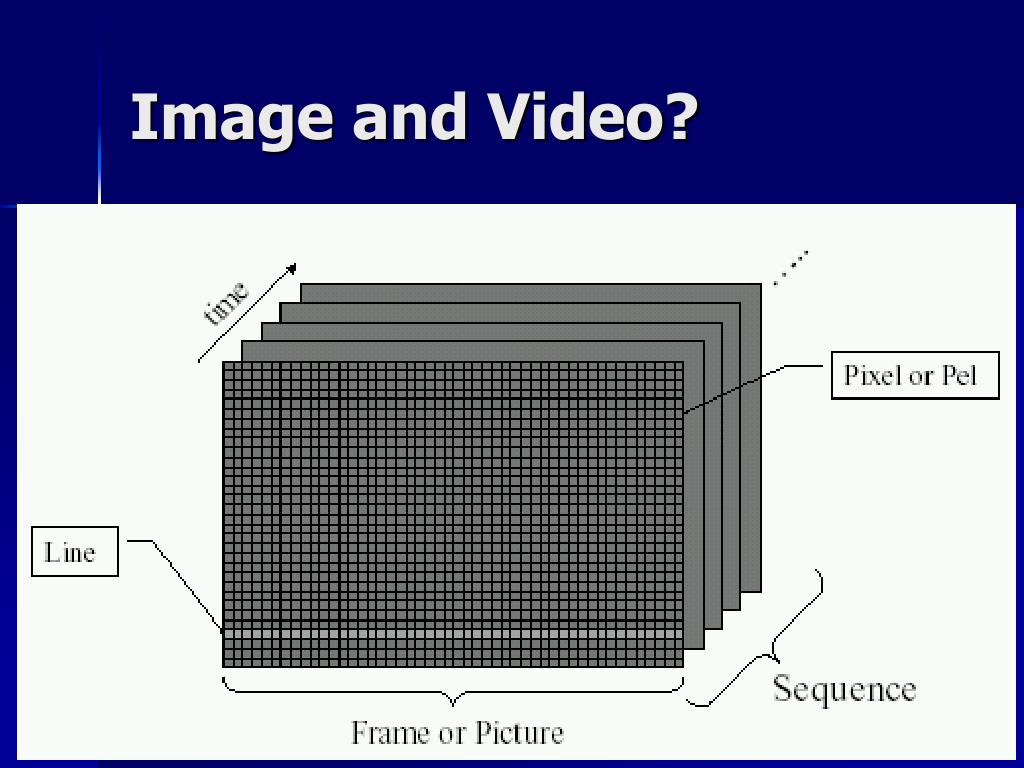Image and Video?