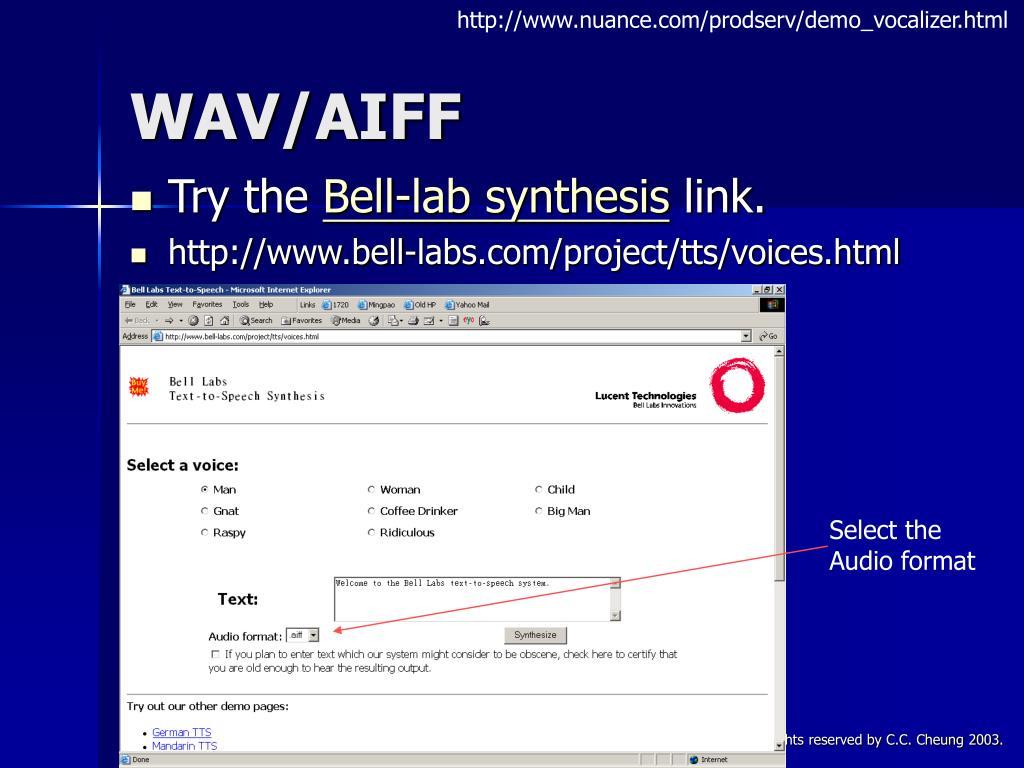 http://www.nuance.com/prodserv/demo_vocalizer.html