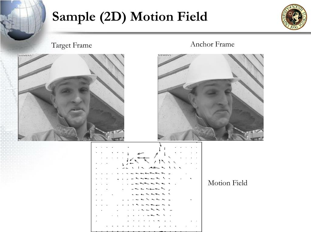 Sample (2D) Motion Field