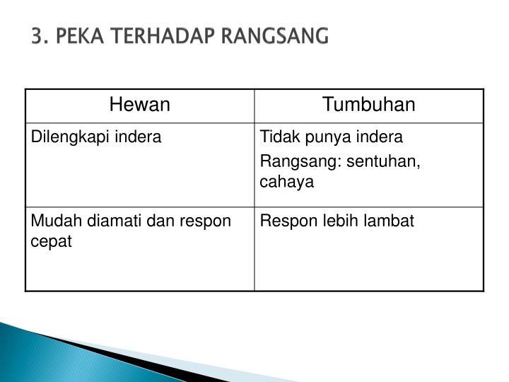 3. PEKA TERHADAP RANGSANG