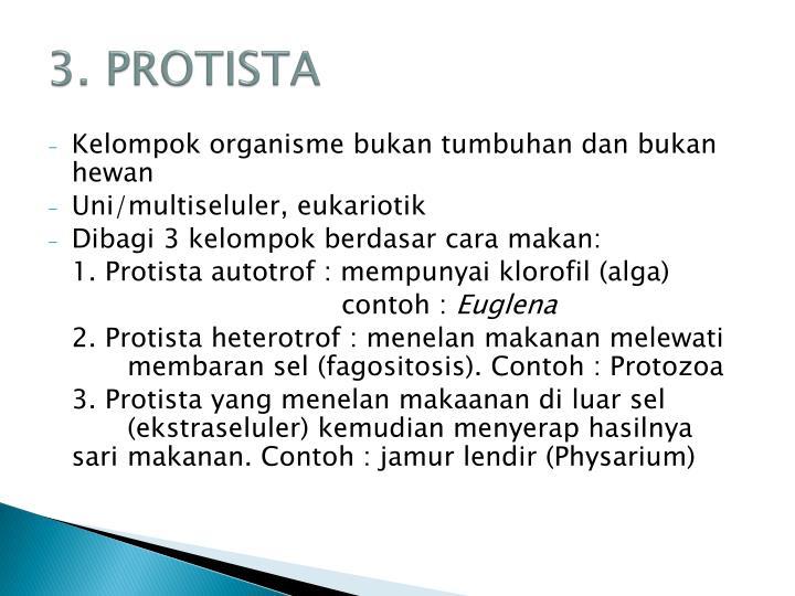 3. PROTISTA