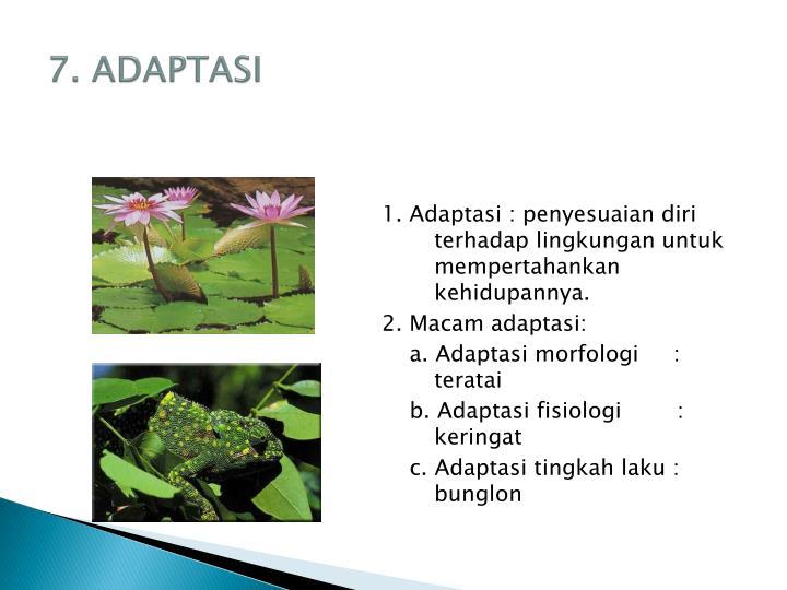 7. ADAPTASI