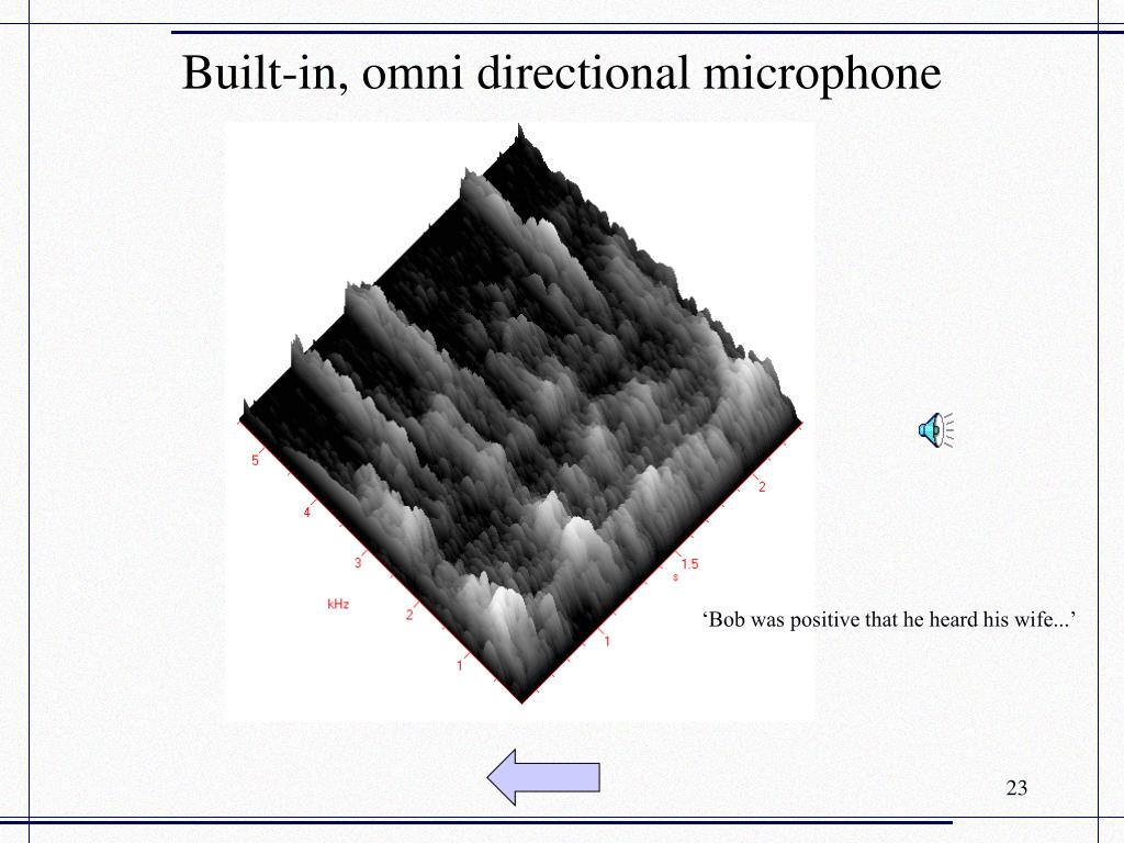 Built-in, omni directional microphone