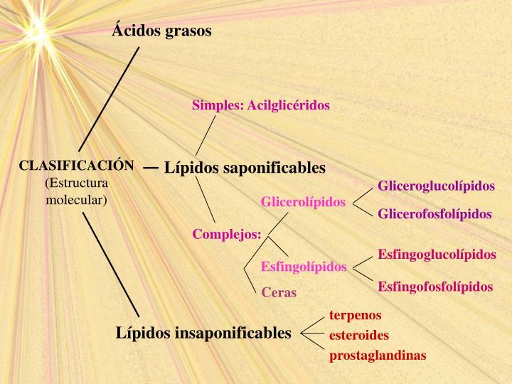 Simples: Acilglicéridos