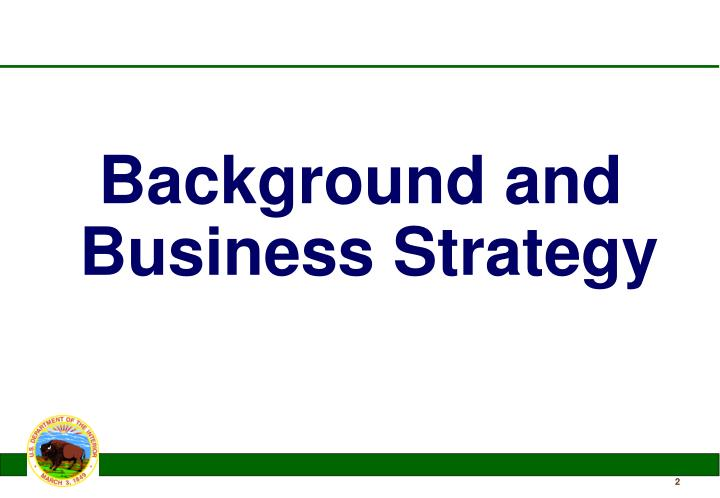 Background and Business Strategy