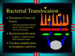 bacterial translocation