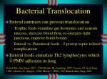 bacterial translocation1