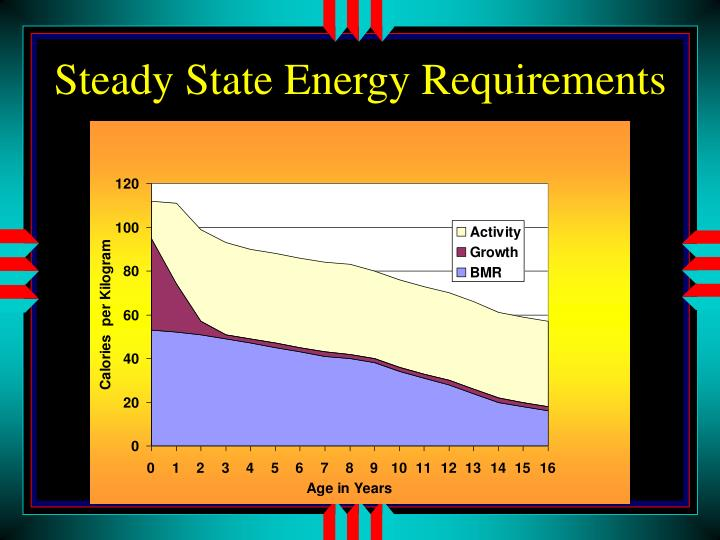 Steady State Energy Requirements
