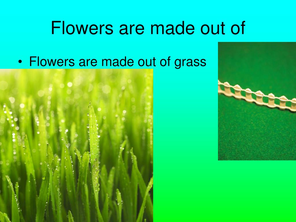 Flowers are made out of