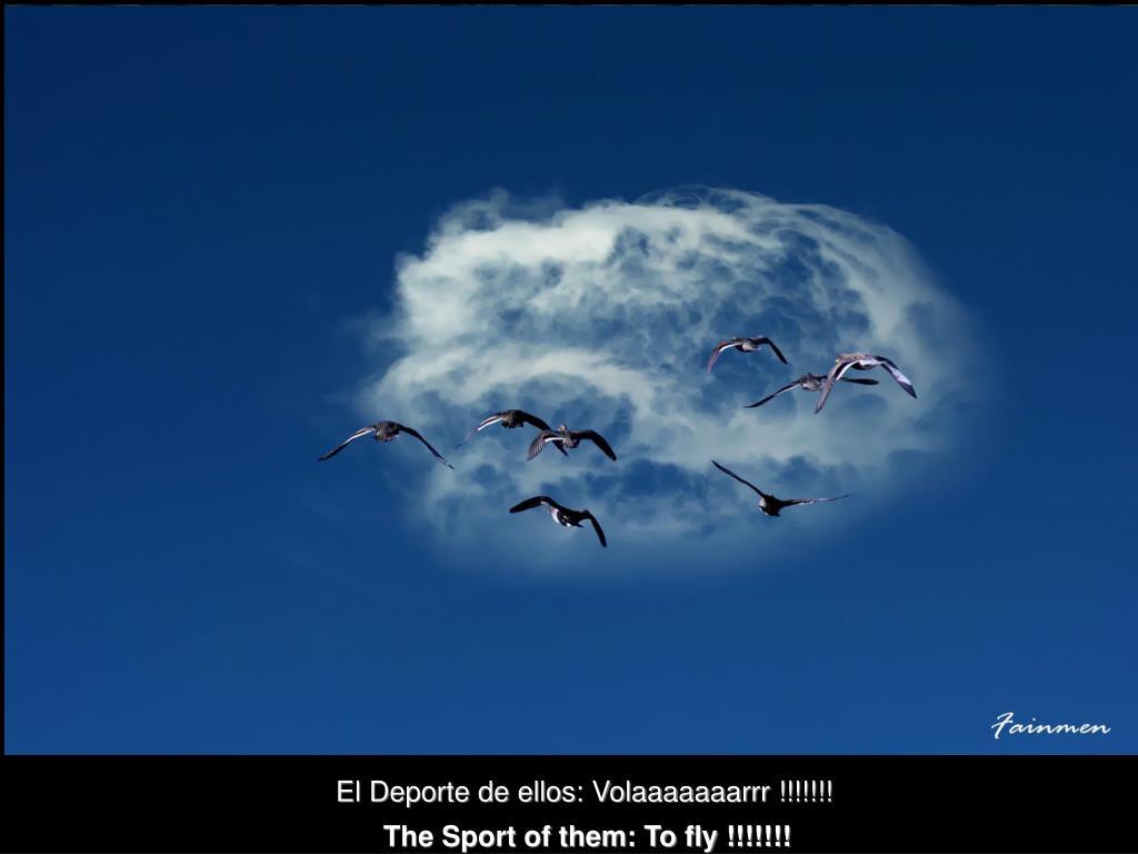 El Deporte de ellos: Volaaaaaaarrr !!!!!!!